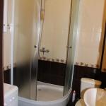 Душевая кабинка в ванне